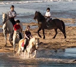Gruppe von Reiterm beim Ausritt zu Dernish Island