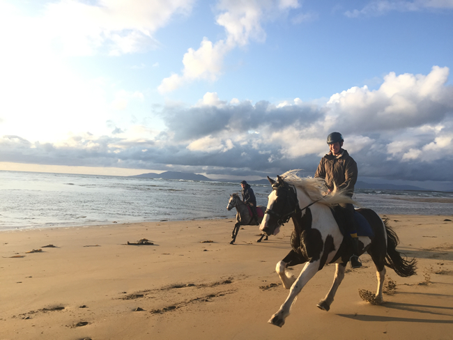 Zwei Reiter im Galopp am Strand in Sligo