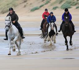 Eine Gruppe von Reitern und Pferden im Galopp am Strand